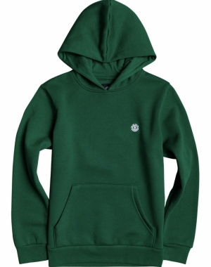 cornell classic hoodie boy logo