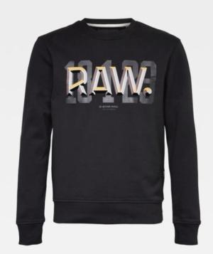 Q4.Raw dot r sw ls logo
